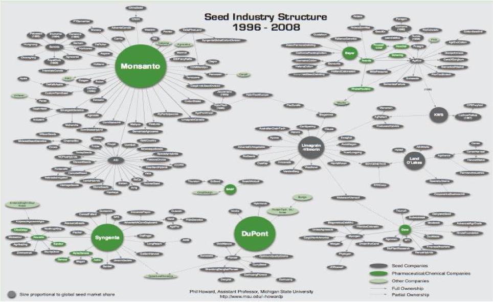 industria sementi.png
